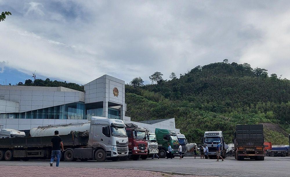 Dịch vụ vận chuyển và xin giấy phép hàng quá cảnh