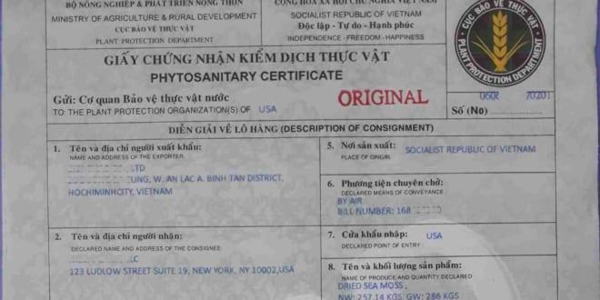 Thủ tục nhập khẩu bàn ghế nội thất gỗ về Việt Nam cần chó giấy chứng nhận kiểm dịch thực vật