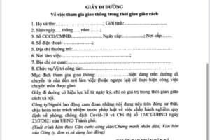 Mẫu giấy đi đường trên địa bàn TP Hà Nội trong thời gian thực hiện Chỉ thị 17.